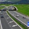 Řidičský průkaz si dosud vyměnilo čtvrt milionu řidičů