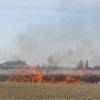 Na poli shořela pšenice za půl milionu