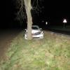 Řidiči na Šumperku vběhla před vozidlo zvěř