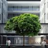 V areálu FN Olomouc roste první energeticky úsporná klinika v České republice