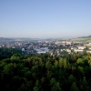 Šumperk plánuje vybudovat cyklotratě v příměstském lese