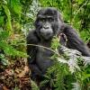 V zábřežském Retru představí cestovatel zážitky z Ugandy