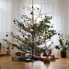Šumperk – Strom splněných přání 2016