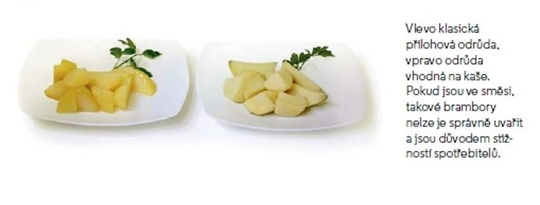 brambory zdroj: SZPI