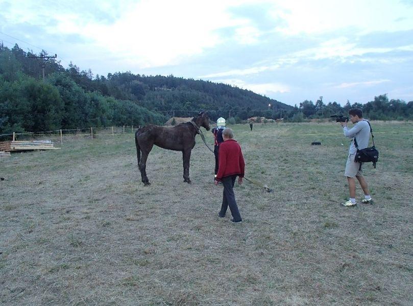 Prostějovsko - záchrana koně zdroj foto: HZS Olk.