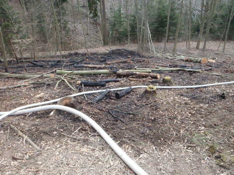 Olomoucký kraj - vypalování trávy a lesních porostů zdroj foto: HZS Olk