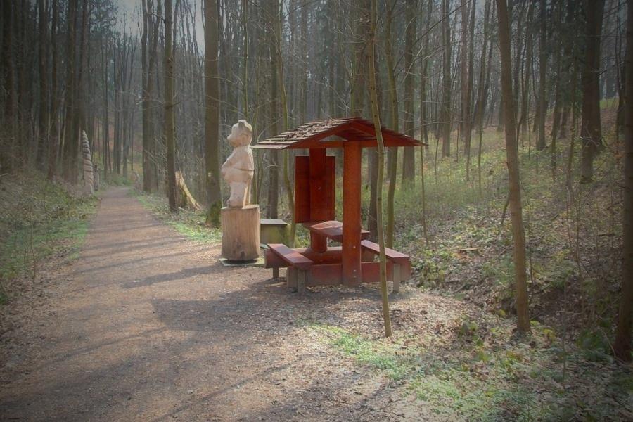 Šumperský příměstský les se stane rekreační foto: archiv šumpersko.net