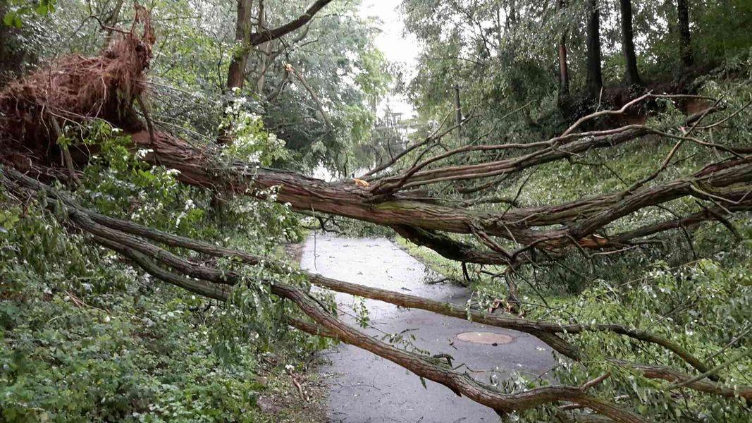 Olomoucký kraj (Medlov) - likvidace následků silných bouřek zdroj foto: HZS Olk