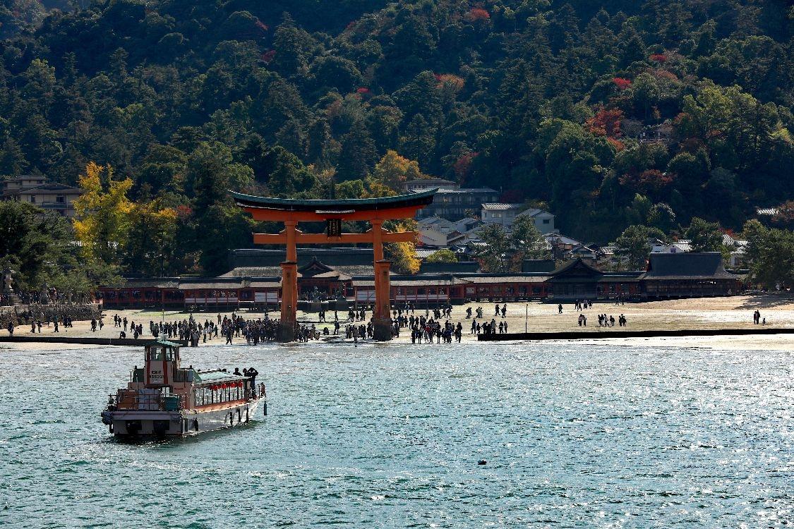 Barevný podzim v Japonsku foto: Roman Kamler