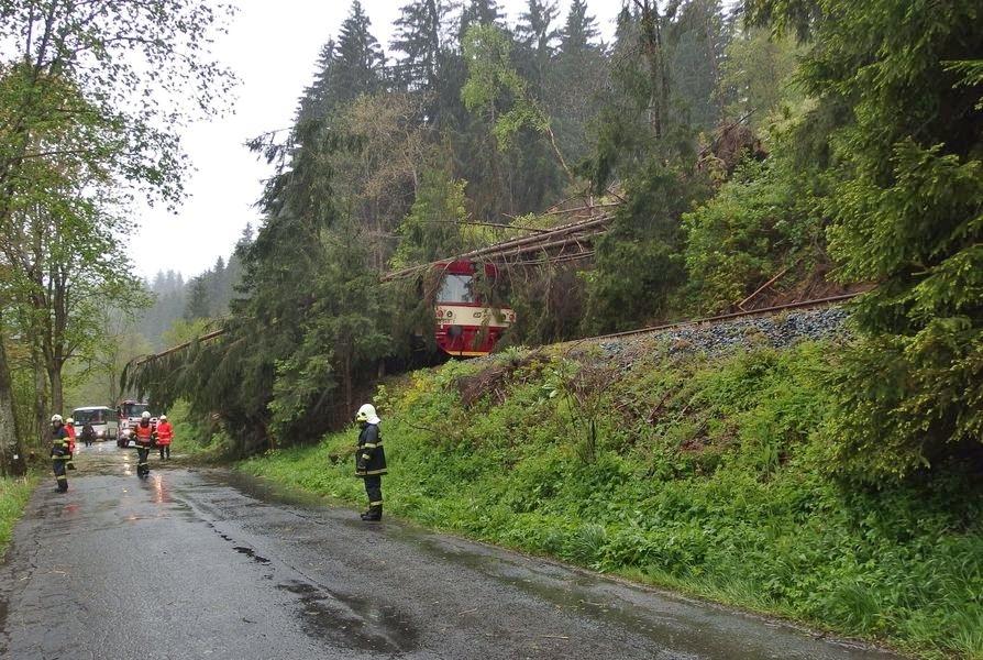 Popadané stromy - železniční trať Staré Město