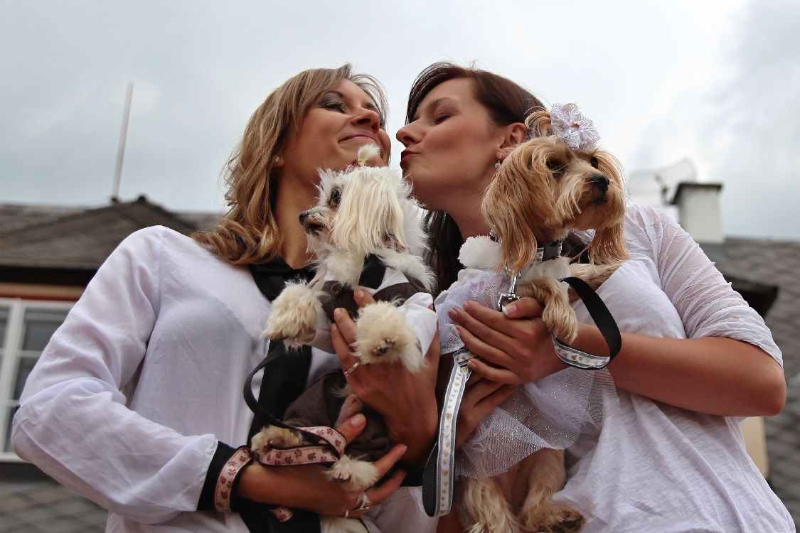 Marceliny modelky dokonale podpořily psí modely