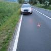 Lesní zvěř potrápila ve středu 23. května dva řidiče