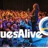 Festival Blues Alive  získal nejprestižnější světové žánrové ocenění!