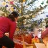 Strom splněných přání v Šumperku