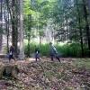 Opravují se lesní oplocenky