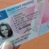 Do konce letošního roku propadne řidičský průkaz ještě 268 tisícům řidičů
