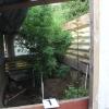 Muž ze Zábřežska pěstoval konopí na zahradě u rodinného domu