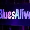 Šumperské Blues Alive začíná ve čtvrtek