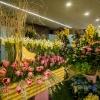 Jarní výstava Flora Olomouc je zrušena