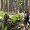 Hledáme Zelenou školu Olomouckého kraje