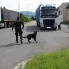 Policie v kraji kontrolovala nákladní vozidla a autobusy