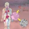 Vědci obohatili spektrum protinádorových látek
