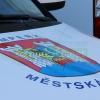 Strážníci a policisté vyprostili muže z příkopu