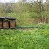 Zloděj ukradl úly i s včelstvem