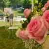 Vyznání růžím letos přilákalo bezmála sedm tisíc lidí