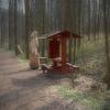 V šumperském příměstském lese dokončují revitalizaci